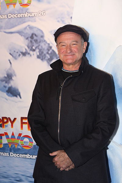 Robin Williams continued film success